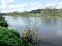 Attached Image: Wye_Builth_upstream_10-4-12.JPG
