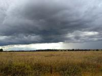 Attached Image: IMG_0418---Melton-Storm.jpg